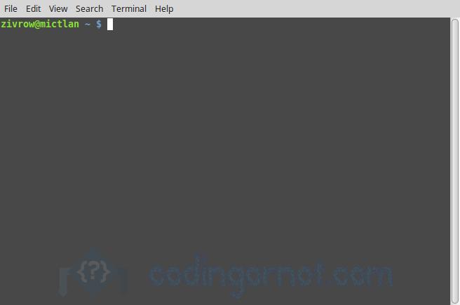 Visualización de la terminal