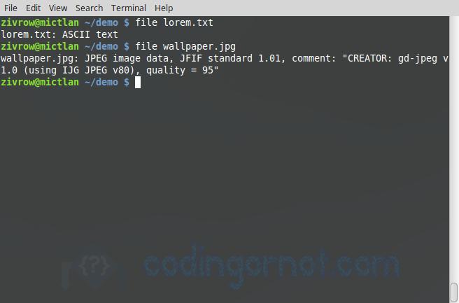 Uso del comando file