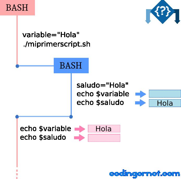 Ejecución de un script en Bash con el intérprete.